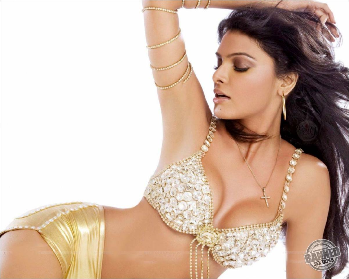 sherlyn chopra naked celebrities free movies and pictures